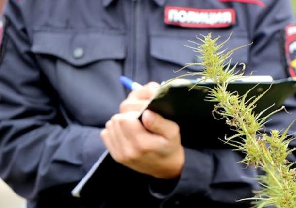В Анапе был задержан 25-летний наркодиллер